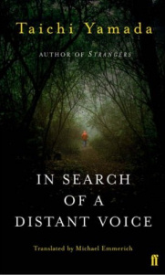 Copertina di In Search of a Distant Voice